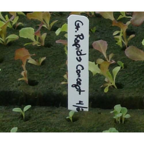 White Plant Stake Labels, 100/bag