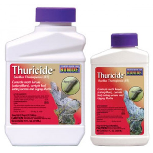 Natural Pest Control for Aquaponics