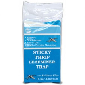 Sticky Traps for Leaf Miner and Thrips