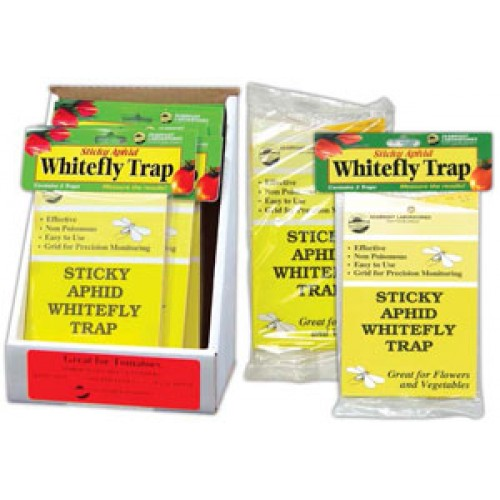 Sticky Traps for Whitefly and Aphid