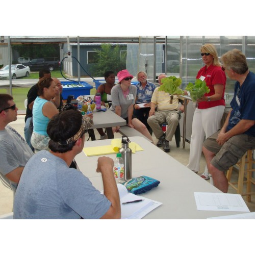 A Day in the Life! 1-day Aquaponics Class, Feb 21, 2020