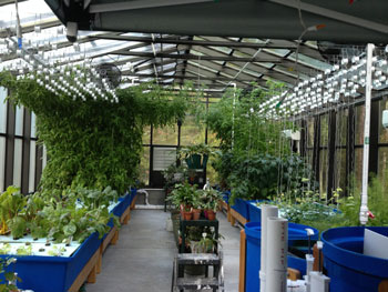 Aquaponic Systems Nelson Amp Pade Inc
