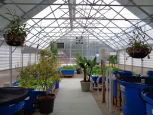 nelson-and-pade-hoby-aquaponic-systems