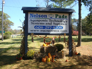 Nelson-and-Pade-sign
