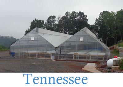 aquaponics-greenhouse-01