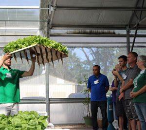 Private Aquaponics Greenhouse Tour