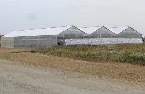 premium-greenhouse