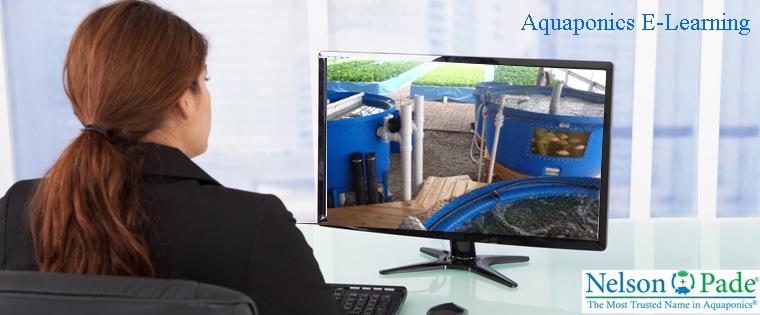 Aquaponics online courses