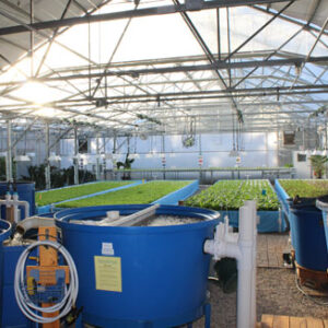 Greenhouses and Indoor Farming Online Course