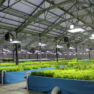 Commercial Aquaponics Online Course
