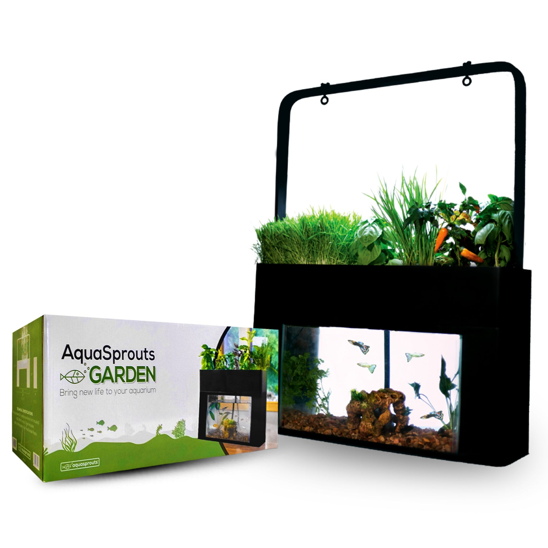 AquaSprouts Mini Aquaponic Gardens and Fountains