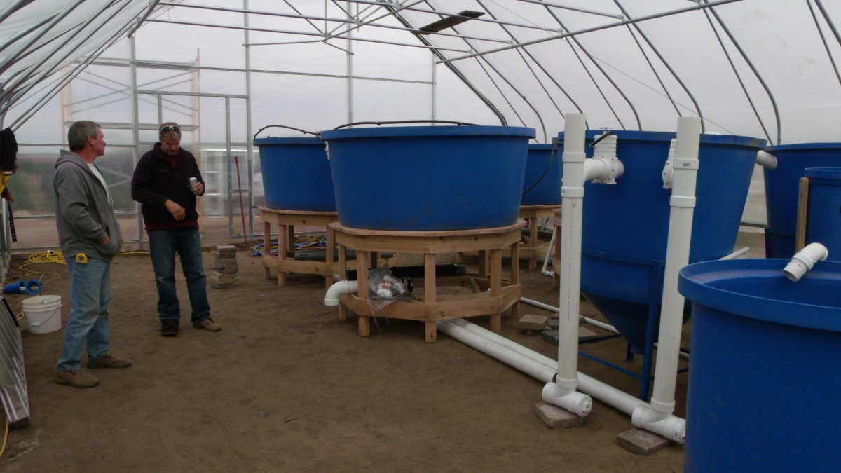 commercial aquaponic systems from nelson and pade earn
