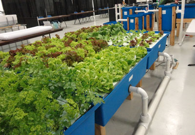 home and school systems � nelson amp pade aquaponics