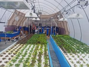 Aquaponic MicroFarm 2 lettuce rafts